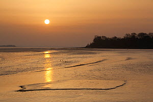 Sunrise over coastal mudflats, Campfield Marsh RSPB reserve, Bowness, Solway Firth, Cumbria, UK, April 2011  -  Peter Cairns / 2020VISION
