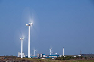 Robin Rigg windfarm, Workington, Solway Firth, Cumbria, UK, April 2011  -  Peter Cairns / 2020VISION