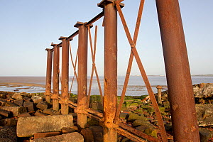 Rusting remains of viaduct, Campfield Marsh RSPB reserve, Solway Firth, Cumbria, UK, April 2011  -  Peter Cairns / 2020VISION