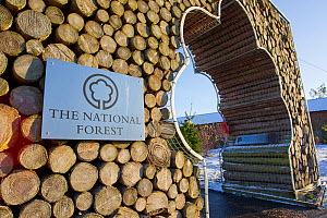Entrance to The National Forest, Moira, Derbyshire, UK, November 2011 - Peter Cairns / 2020VISION