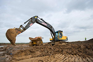 Heavy earth excavator removes clay for future replacement with topsoil. Machine operator Alan Deval. Wetland habitat ecosytem creation for the RSPB by Breheny Civil Engineers at Bowers Marsh RSPB Rese... - Terry Whittaker / 2020VISION