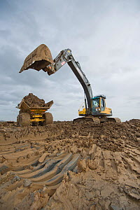 Wetland habitat ecosytem creation for the RSPB by Breheny Civil Engineers at Bowers Marsh RSPB Reserve, Thames Estuary, Essex, UK. November 2011. Heavy earth excavator removes clay for future replacem...  -  Terry Whittaker / 2020VISION