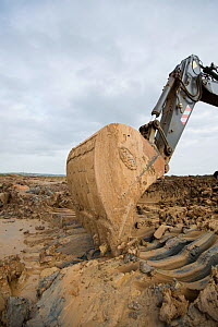 Heavy earth excavator removes clay for future replacement with topsoil. Wetland habitat ecosytem creation for the RSPB by Breheny Civil Engineers at Bowers Marsh RSPB Reserve, Thames Estuary, Essex, U...  -  Terry Whittaker / 2020VISION