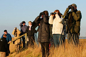 At event to introduce the local community to the RSPB Wallasea Wild Coast Project, RSPB staff and  volunteers showed the birdlife to visitors and explained the plans for the future of Wallasea Island,...  -  Terry Whittaker / 2020VISION