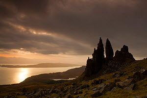 Old Man of Storr at dawn, Skye, Inner Hebrides, Scotland, UK, January 2011. 2020VISION Book Plate.Did you know? This landmark has been used as a location in several films, most recently the 2012 sci-f...  -  Peter Cairns / 2020VISION