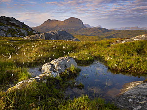Bog wetlands with Suilven mountain in the background at dawn, Assynt mountains, Highland, Scotland, UK, June 2011  -  Joe Cornish / 2020VISION