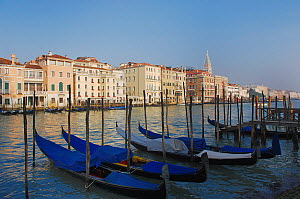Bay of Venice and Palazzo Ducale di Venezia. Doge's Palace, Venice, Italy, Europe, December 2006.  -  Stefan Huwiler