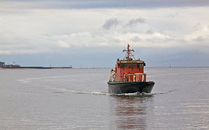 Liverpool pilot boat 'Petrel' approaching her moorings on the Cruise Liner Terminal. River Mersey, England, August 2011. - Graham Brazendale