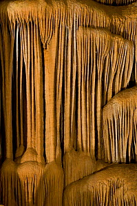 Calcite and Aragonite deposits in the Clamouse caves, Herault, Languedoc, France, August 2008  -  Jean E. Roche
