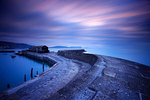 The Cob at Lyme Regis at dawn with the Jurassic Coast beyond. Dorset, England, UK, March 2010. - David Noton