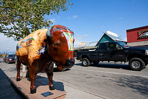 'Community bison' model on the streets of West Yellowstone, Wyoming, USA, September 2008 - Peter Cairns