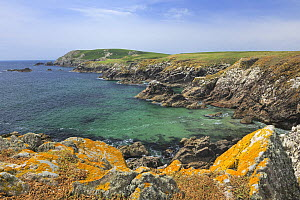 Coastal landscape with rocky shore, Great Saltee Island, County Wexford, Republic of Ireland, June 2011  -  Robert Thompson