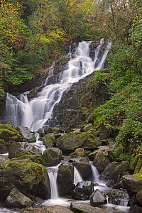 Torc waterfall, Killarnay National Park, County Kerry, Republic of Ireland, November 2010  -  Robert Thompson