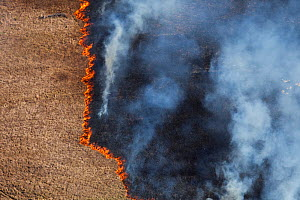 Aerial photo of grassland fire, Western Cape, South Africa, August 2009  -  Richard Du Toit