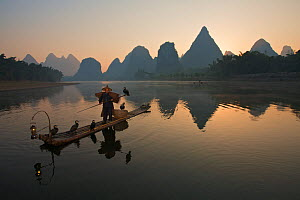 Chinese fisherman on his raft with Great Cormorant (Phalacrocorax carbo sinensis), silhouetted against the karst hills at the Li River. Yangshuo, Guangxi, China, November.  -  Florian Möllers