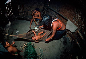 A Matses Indian family, seen inside their hut. The mother spreads out a hammock for her young baby, while another child looks on and the father works on a hunting weapon, Amazonia, Peru, November 2005... - Jeff Rotman