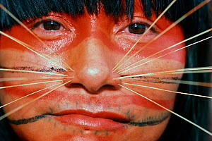 Red paint covers the top half of a Matses woman's face, and she wears decorative spines on both sides of her nose. This makeup  represents the whiskers of the jaguar spirit. Amazon, Peru, November 200... - Jeff Rotman