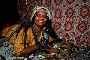 Snake Charmer with cobra and other snakes, Jaipur, Rajasthan, India, December 2007, Model Released  -  Jeff Rotman