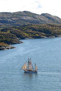 1901 Colin Archer rescue boat 'Stavanger' sailing near Rorvik in the Vikna archipelago, Norway, May 2009.  -  Nic Compton
