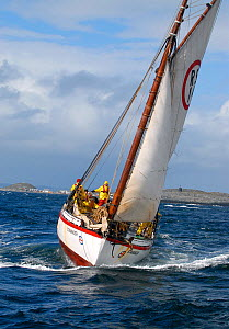 1901 Colin Archer rescue boat 'Stavanger' in choppy conditions off Sor-Gjslingan in the Vikna archipelago, Norway, May 2009.  -  Nic Compton