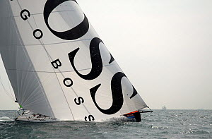 Open 60 'Hugo Boss' sailing on the Solent, Hampshire, England, August 2006. All non-editorial uses must be cleared individually.  -  Nic Compton