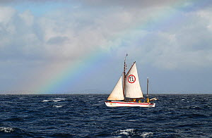 1901 Colin Archer rescue boat 'Stavanger' sailing beneath rainbow in the Vikna archipelago, Norway, May 2009.  -  Nic Compton