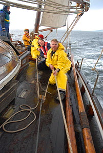 Crew on board 1901 Colin Archer rescue boat 'Stavanger' sailing in the Vikna archipelago, Norway, May 2009.  -  Nic Compton