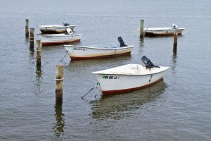 Small boats tied to mooring posts in Paxtuent river, Solomons Island, Maryland, USA, September 2011. - Norma Brazendale