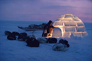 Inuit man pulling aside igloo door at dusk. Igloolik, Nunavut, Canada, 1993. 40 BELOW bookplate. - Bryan and Cherry Alexander