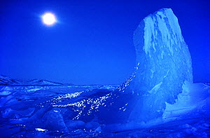 Moonlit iceberg taken at midday during the polar night, Northwest Greenland, 1980. 40 BELOW bookplate. - Bryan and Cherry Alexander