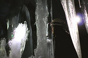Delicate ice crystal formations inside volcanic ice cave, Mount Erebus, Antarctica.  Taken on location for BBC Frozen Planet series, 2009  -  Chadden Hunter