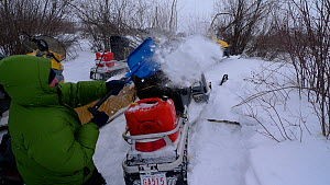 Getting snow off snowmobiles after successful filming of Timber wolves hunting bison, Arctic circle in northern Canada. Taken on location for BBC Frozen Planet series, 2009 - Chadden Hunter