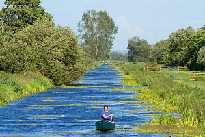 Man in canoe on North Drain, Tadham Moor, Wedmore, Somerset Levels, Somerset, England, UK, June 2011 - Guy Edwardes / 2020VISION