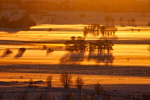 View south over the Somerset Levels from Walton Hill on a misty winter evening with snow on the ground. View includes Butleigh Moor, Somerton Moor, Street Moor, Low Ham Moor, Walton Moor, Pitney Moor,... - Guy Edwardes / 2020VISION