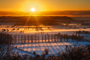 Winter sunset over the Somerset Levels from Walton Hill on a misty evening with snow on the ground. View includes Butleigh Moor, Somerton Moor, Street Moor, Low Ham Moor, Walton Moor, Pitney Moor, Hui...  -  Guy Edwardes / 2020VISION