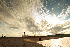 Visitors at Chanonry Point watching Bottlenose dolphins in Moray Firth, with Chanonry Lighthouse behind in setting sun, Inverness-shire, Scotland, UK, June 2011  -  John MacPherson / 2020VISION
