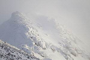 Mist swirling around Coire an Lochain in winter, Cairngorm Mountains, Cairngorms NP, Highland, Scotland, UK, February 2011  -  Peter Cairns / 2020VISION