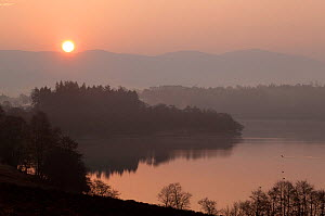 Loch Alvie at dawn, Cairngorms NP, Highland, Scotland, UK, April 2011 - Peter Cairns / 2020VISION
