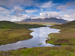 Quinag mountain seen beyond Loch Assynt, Coigach / Assynt SWT, Sutherland, Highlands, Scotland, UK, June 2011  -  Joe Cornish / 2020VISION