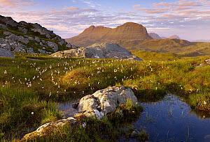 Suilven in early morning light, Coigach / Assynt SWT, Sutherland, Highlands, Scotland, UK, June 2011  -  Joe Cornish / 2020VISION
