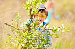 Local school child cuts and collects growing tree saplings at Westhay to maintain wetland habitat, Westhay Nature Reserve (Somerset Wildlife Trust), Somerset Levels, Somerset, UK. June 2011. Did you k...  -  Ross Hoddinott / 2020VISION