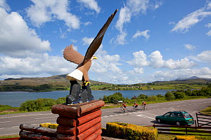 White tailed sea eagle sculpture used as emblem for Aros Visitor Centre, Portree, Skye, Inner Hebrides, Scotland, UK, June 2011  -  Peter Cairns / 2020VISION