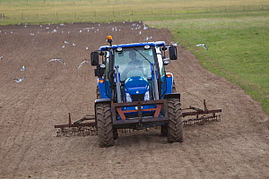Tractor ploughing machair, RSPB Balranald reserve, North Uist, Western Isles / Outer Hebrides, Scotland, UK, May 2011  -  Peter Cairns / 2020VISION