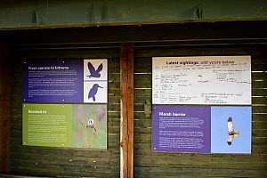 Information and sightings boards, Lakenheath Fen RSPB Reserve, Suffolk, UK, May 2011  -  Terry Whittaker / 2020VISION