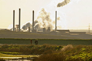 Birdwatchers in foreground with Kemsley Paper Mill in background, Kent, UK, March 2011  -  Terry Whittaker / 2020VISION