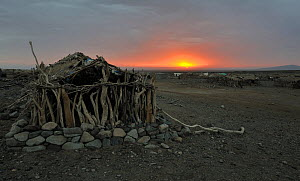 Stone and wooden hut in Amhed ila village at sunrise on Karoum salt lake, Danakil depression, north Ethiopia, February 2009  -  Loic Poidevin