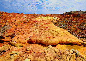 Colourful mineral deposits at the Dallol hydrothermal site on the Karoum salt lake, Danakil depression, northern Ethiopia, February 2009  -  Loic Poidevin