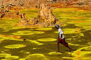 Man walking over colourful mineral deposits at the Dallol hydrothermal site on the Karoum salt lake, Danakil depression,  northern Ethiopia, February 2009 - Loic Poidevin