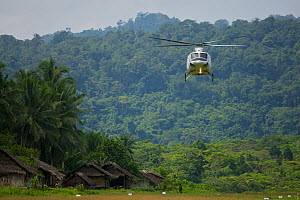 Helicopter arrives at Kwerba Village to airlift the expedition team into the Foja Mountains. Foja Mountains, Papua, Indonesia, 2008. (taken during Conservation International Rapid Assessment Program e... - Tim Laman