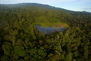 Lake at 1650 m elevation in the Foja Mountains. Site of the base camp called 'Bog Camp'. Foja Mountains, Papua, Indonesia, 2008. (taken during Conservation International Rapid Assessment Program exped...  -  Tim Laman